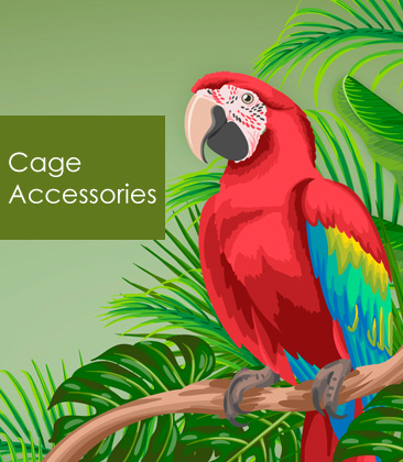 macaw-banner