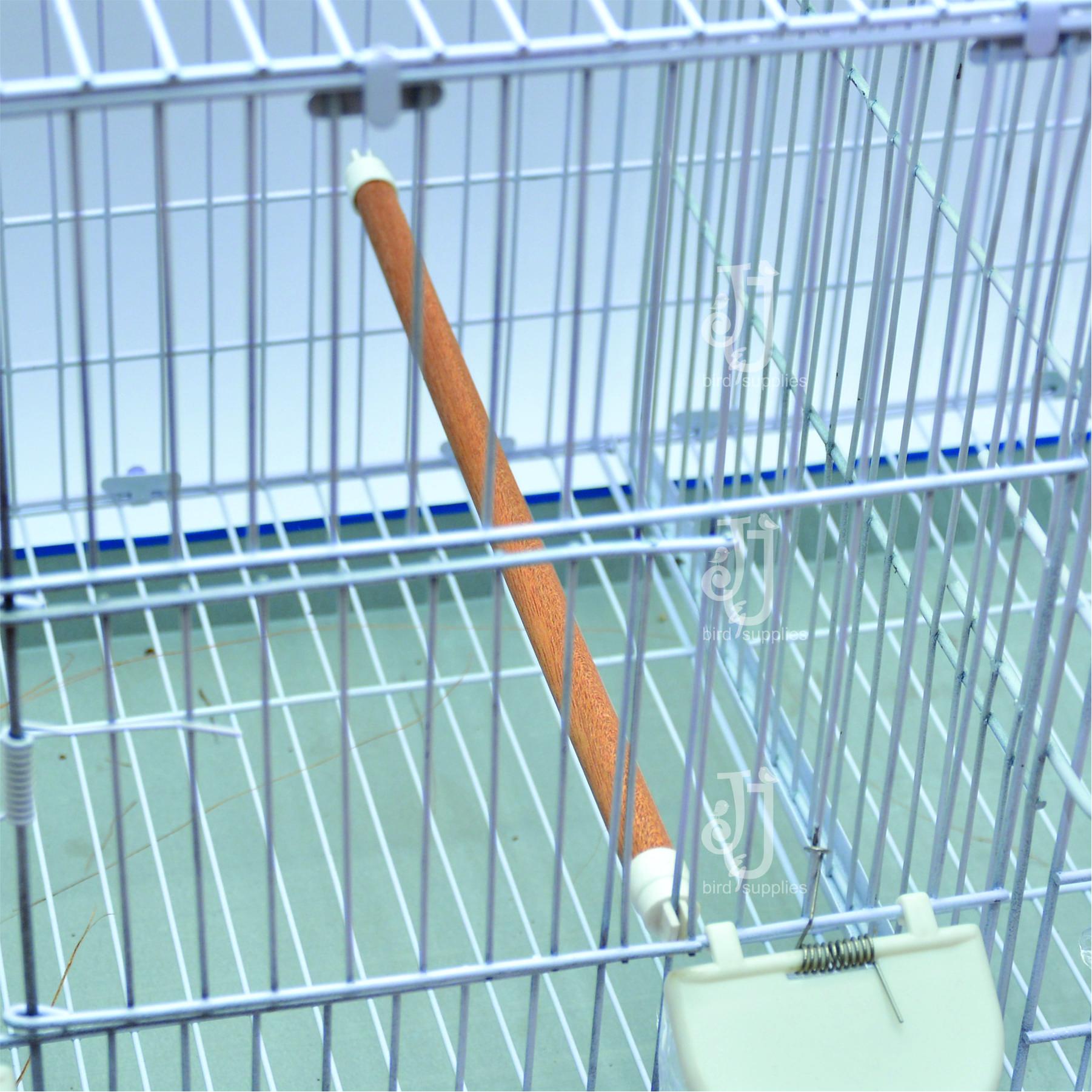 perch in cage